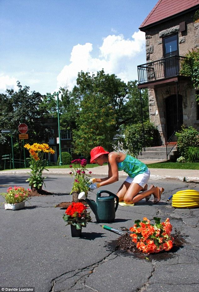 Cote du Vesinet, Montréal - Aszfaltba ágyazott virágoskert