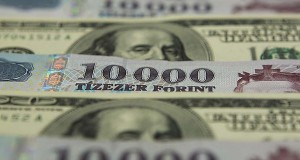money-dollar-forint