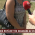 tv2-rtlklub-nem-repulhettek-kanadaba